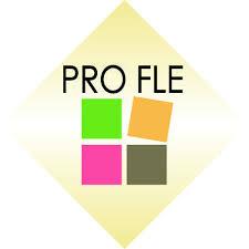 PRO FLE – Підвищення кваліфікації викладачів